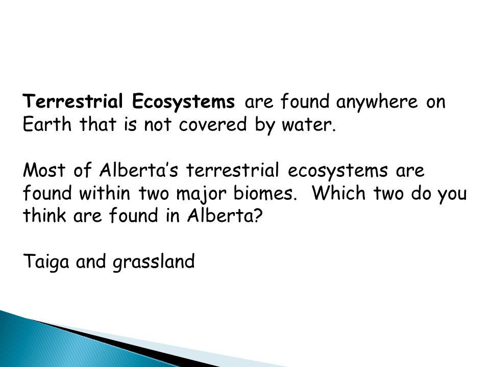 Terrestrial Ecosystems are found anywhere on Earth that is not covered by water. Most of Alberta's terrestrial ecosystems are found within two major b