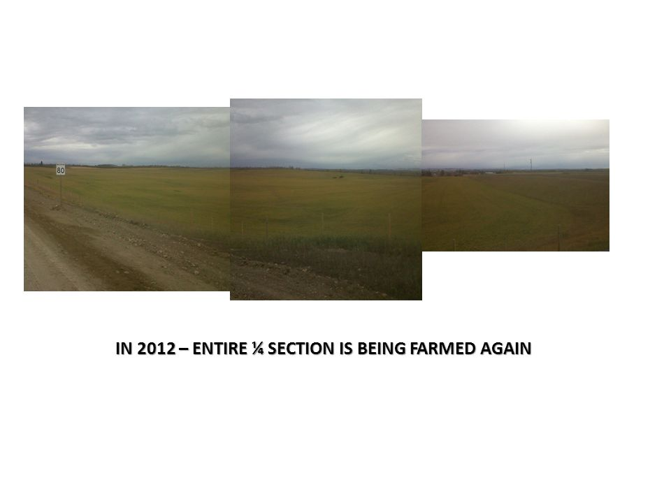 IN 2012 – ENTIRE ¼ SECTION IS BEING FARMED AGAIN