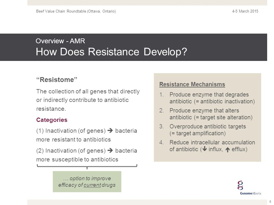 Resistome The collection of all genes that directly or indirectly contribute to antibiotic resistance.
