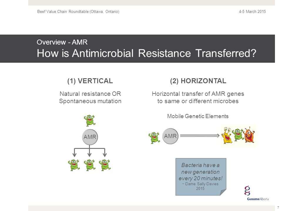 Overview - AMR Why is AMR a Global Health Concern.