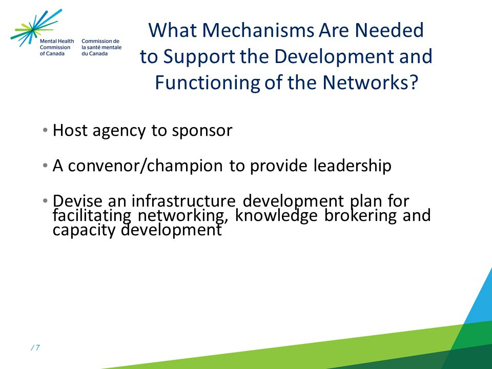/ 7 What Mechanisms Are Needed to Support the Development and Functioning of the Networks.