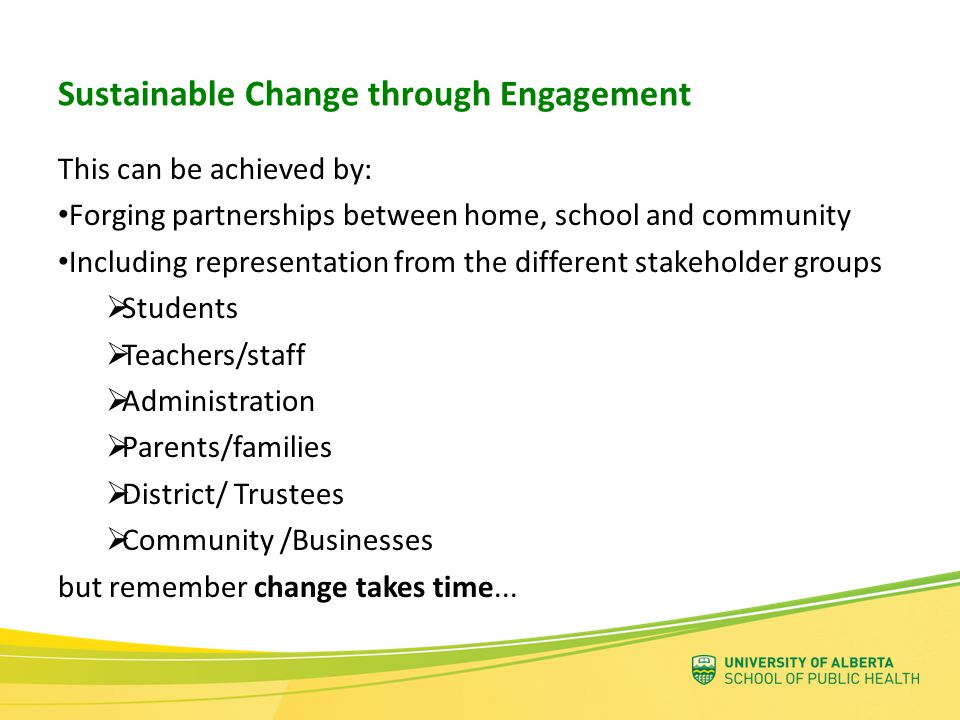 A process to support the development of healthy school communities