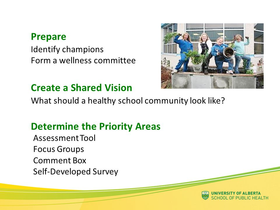Assessment Tool Focus Groups Comment Box Self-Developed Survey Determine the Priority Areas Create a Shared Vision What should a healthy school commun