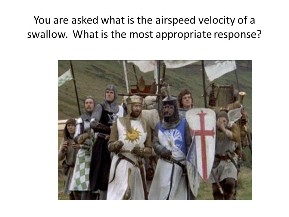 You are asked what is the airspeed velocity of a swallow. What is the most appropriate response