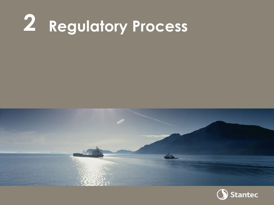 Regulatory Process 2