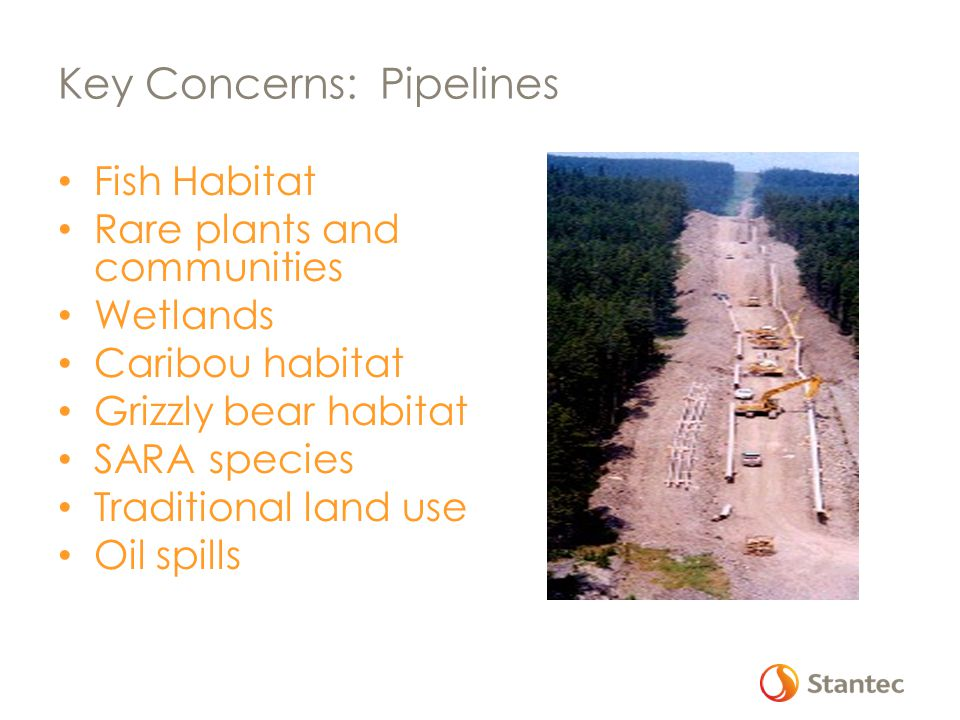 Key Concerns: Pipelines Fish Habitat Rare plants and communities Wetlands Caribou habitat Grizzly bear habitat SARA species Traditional land use Oil spills