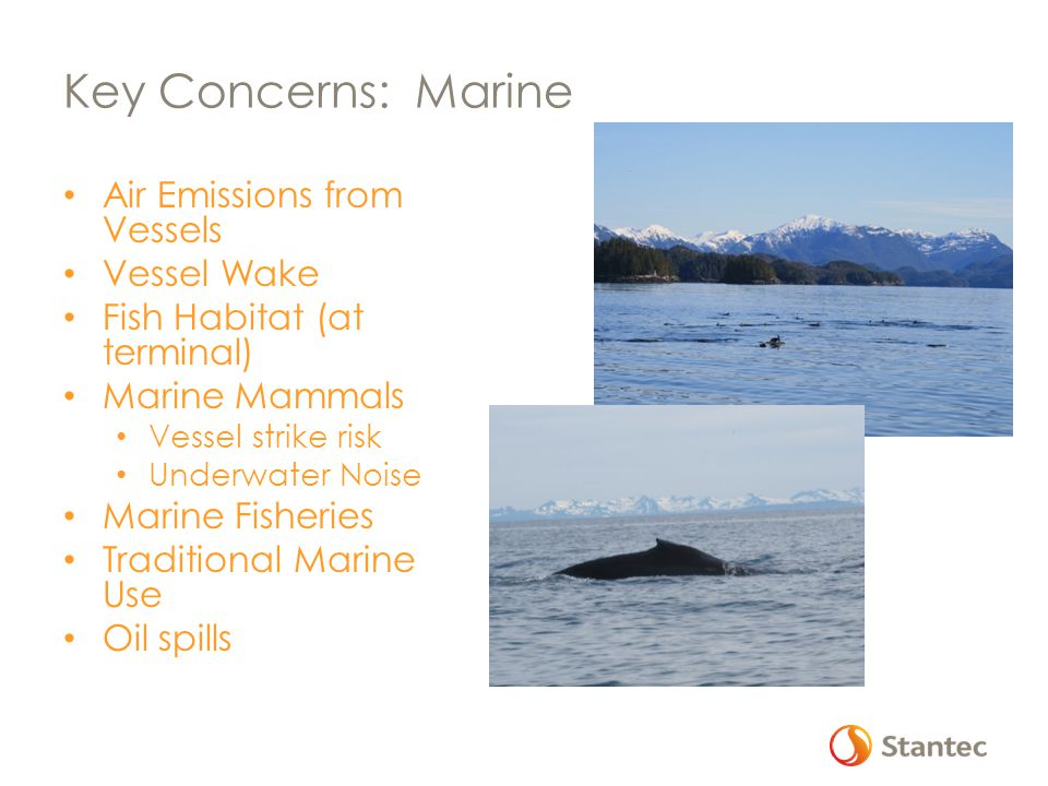 Key Concerns: Marine Air Emissions from Vessels Vessel Wake Fish Habitat (at terminal) Marine Mammals Vessel strike risk Underwater Noise Marine Fisheries Traditional Marine Use Oil spills