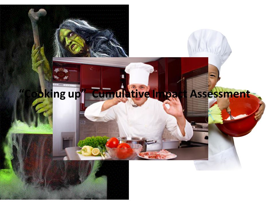 Cooking up Cumulative Impact Assessment