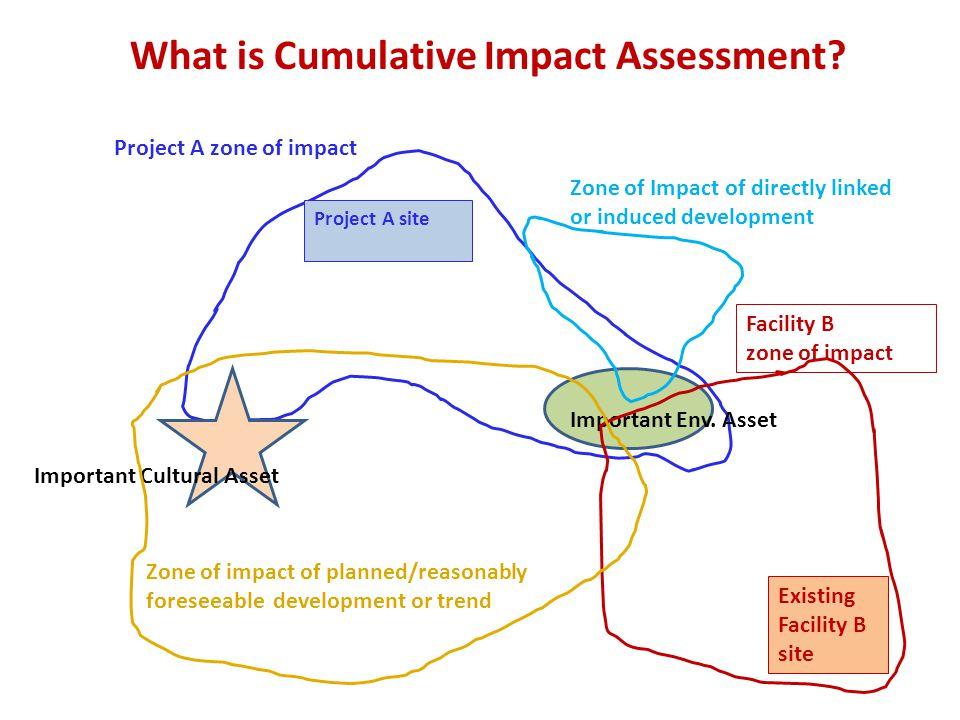 Project Level vs.