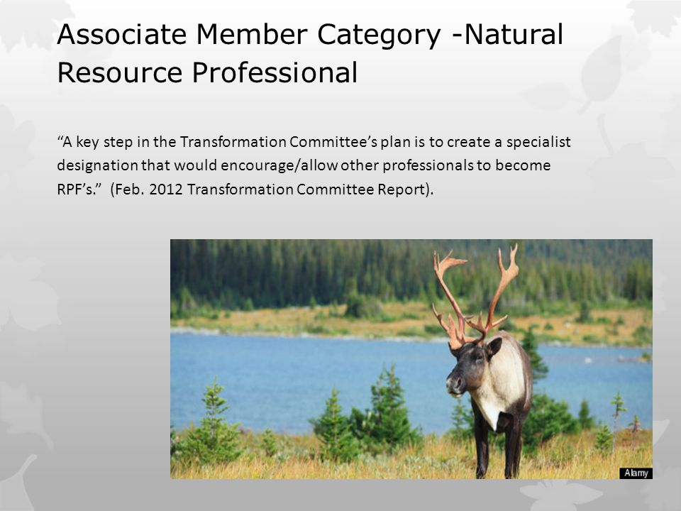 Associate Member Category -Natural Resource Professional A key step in the Transformation Committee's plan is to create a specialist designation that would encourage/allow other professionals to become RPF's. (Feb.