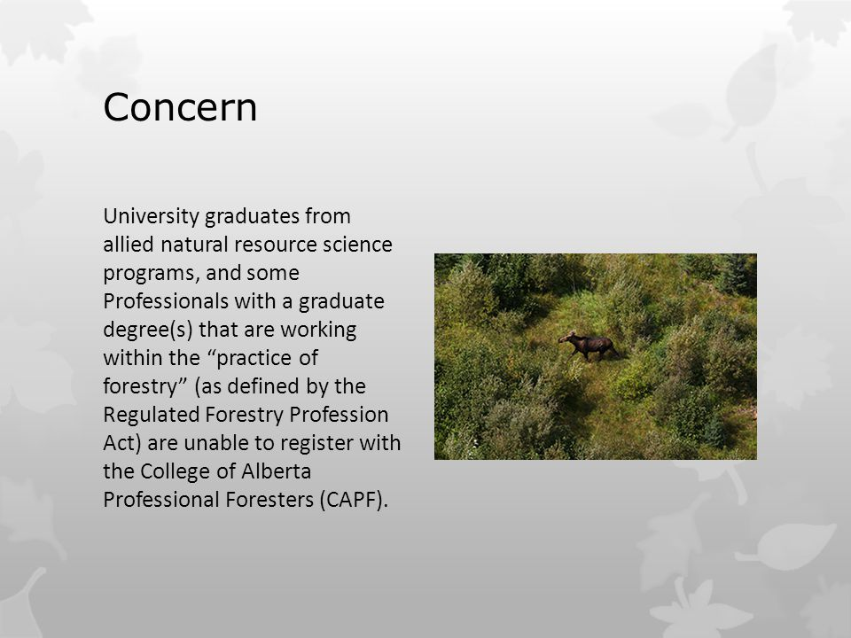 Concern University graduates from allied natural resource science programs, and some Professionals with a graduate degree(s) that are working within the practice of forestry (as defined by the Regulated Forestry Profession Act) are unable to register with the College of Alberta Professional Foresters (CAPF).