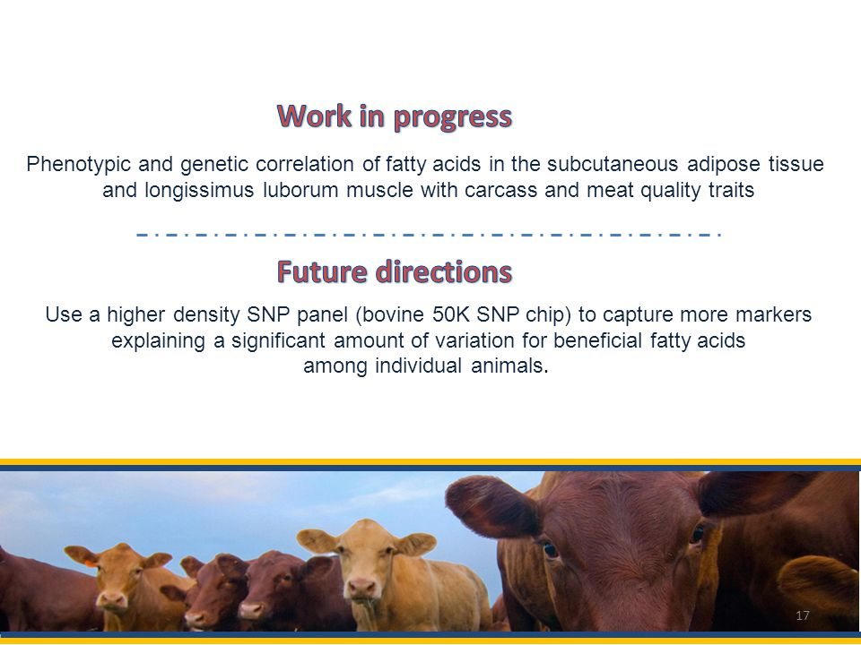 Use a higher density SNP panel (bovine 50K SNP chip) to capture more markers explaining a significant amount of variation for beneficial fatty acids among individual animals.