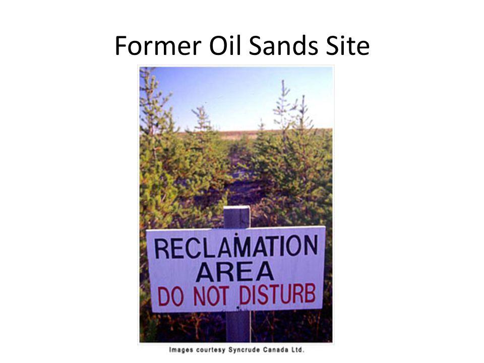Former Oil Sands Site