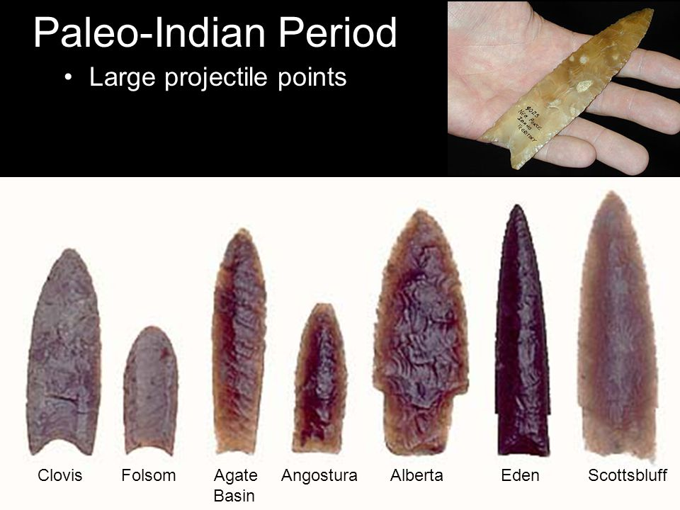 Paleo-Indian Period Large projectile points Clovis Folsom Agate Angostura Alberta Eden Scottsbluff Basin