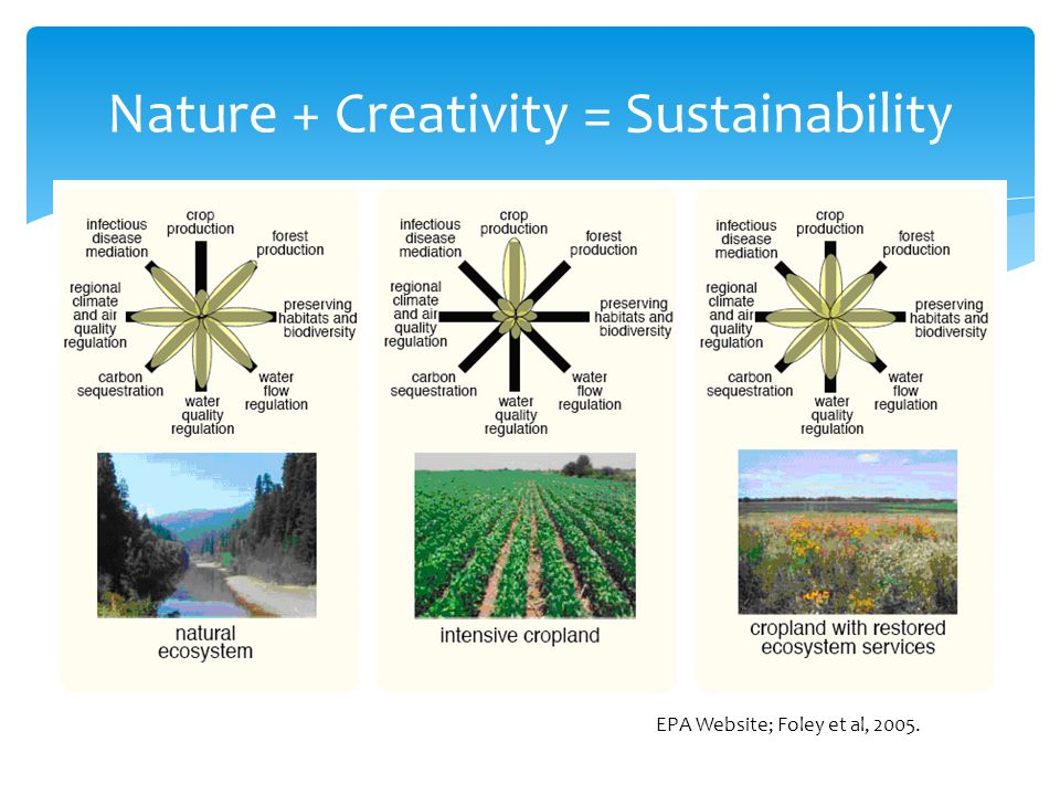 Nature + Creativity = Sustainability EPA Website; Foley et al, 2005.