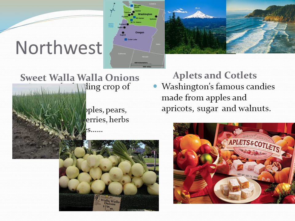 Northwest Sweet Walla Walla Onions Aplets and Cotlets Among the leading crop of Washington Along with apples, pears, hazelnuts, cherries, herbs and vegetables…… Washington's famous candies made from apples and apricots, sugar and walnuts.
