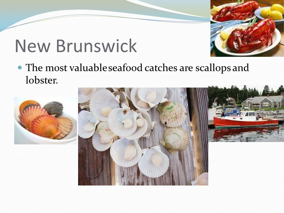 New Brunswick The most valuable seafood catches are scallops and lobster.