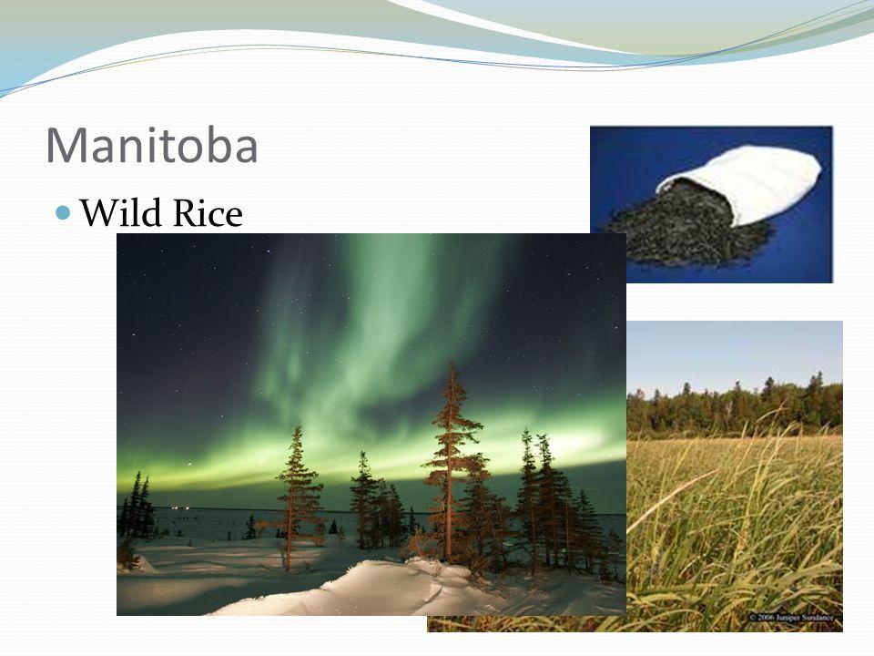 Manitoba Wild Rice