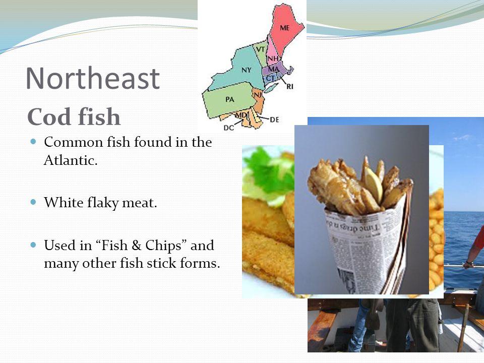 Northeast Cod fish Common fish found in the Atlantic.