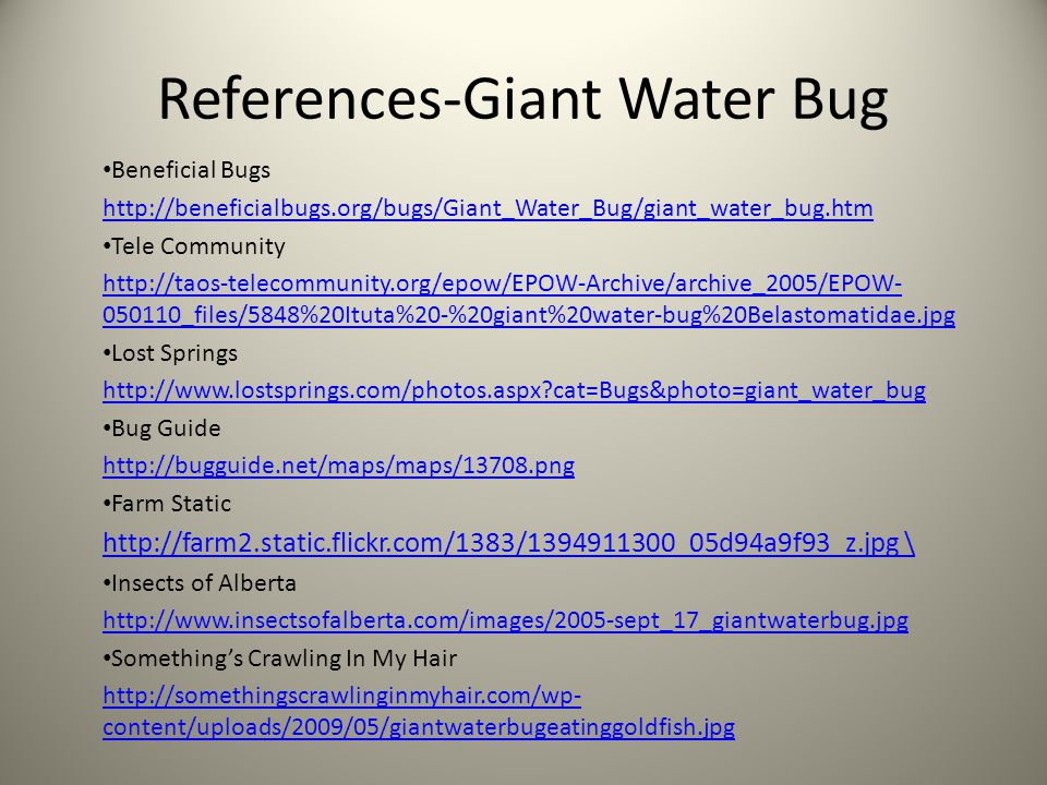 References-Giant Water Bug Beneficial Bugs http://beneficialbugs.org/bugs/Giant_Water_Bug/giant_water_bug.htm Tele Community http://taos-telecommunity.org/epow/EPOW-Archive/archive_2005/EPOW- 050110_files/5848%20Ituta%20-%20giant%20water-bug%20Belastomatidae.jpg Lost Springs http://www.lostsprings.com/photos.aspx cat=Bugs&photo=giant_water_bug Bug Guide http://bugguide.net/maps/maps/13708.png Farm Static http://farm2.static.flickr.com/1383/1394911300_05d94a9f93_z.jpg \ Insects of Alberta http://www.insectsofalberta.com/images/2005-sept_17_giantwaterbug.jpg Something's Crawling In My Hair http://somethingscrawlinginmyhair.com/wp- content/uploads/2009/05/giantwaterbugeatinggoldfish.jpg
