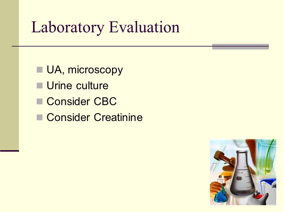 Laboratory Evaluation UA, microscopy Urine culture Consider CBC Consider Creatinine