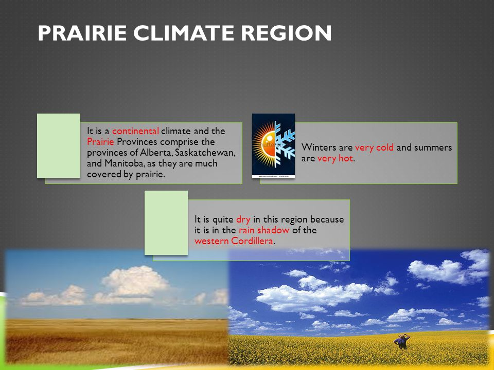 PRAIRIE CLIMATE REGION It is a continental climate and the Prairie Provinces comprise the provinces of Alberta, Saskatchewan, and Manitoba, as they are much covered by prairie.