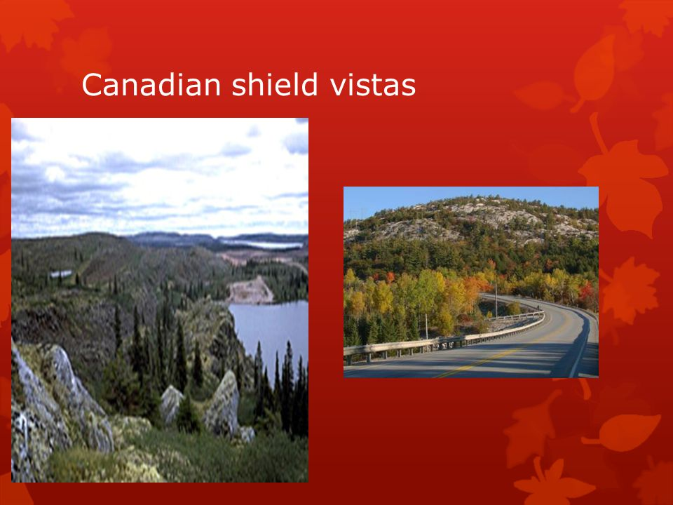 Canadian shield vistas