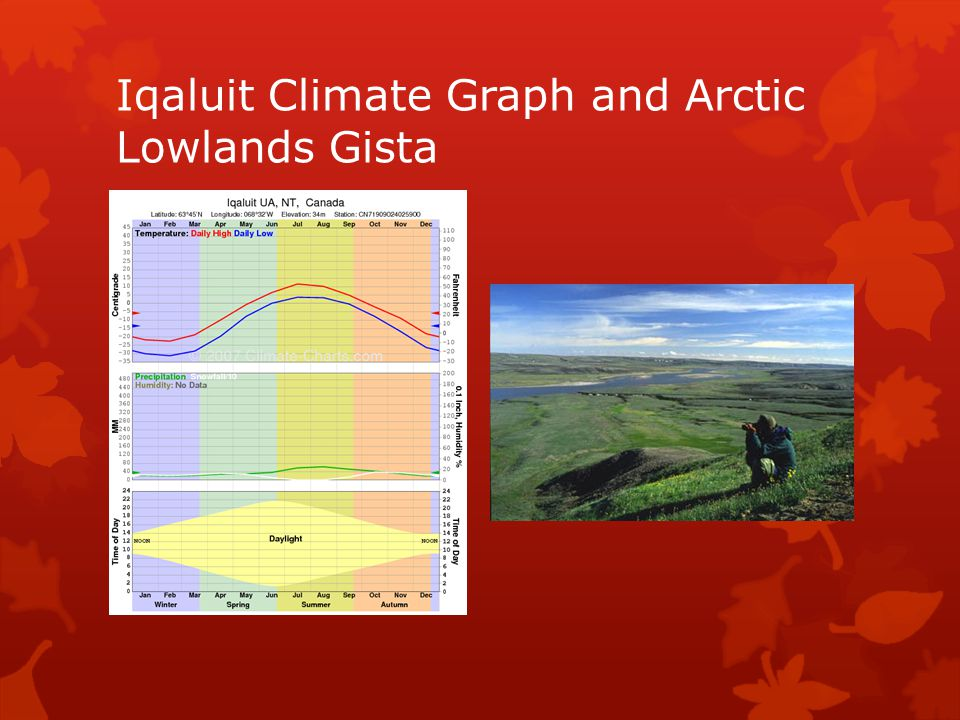 Iqaluit Climate Graph and Arctic Lowlands Gista