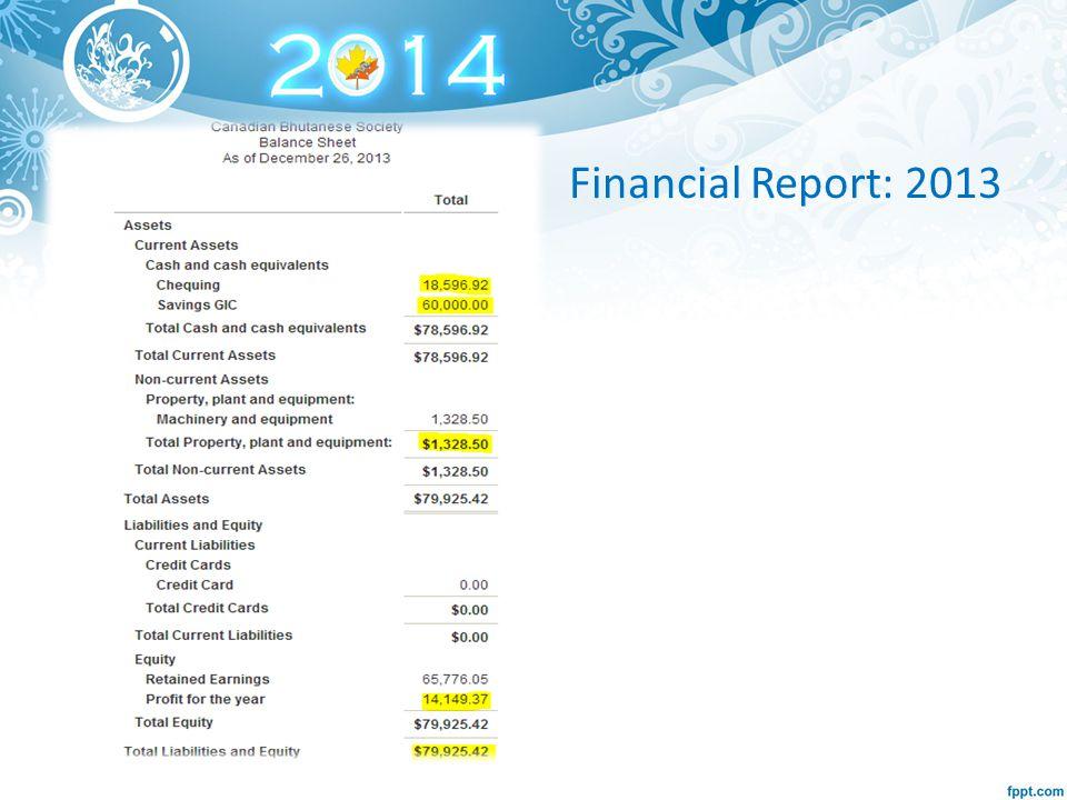 Financial Report: 2013
