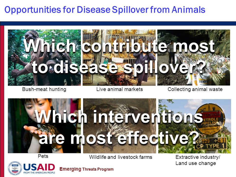 Emerging Threats Program Opportunities for Disease Spillover from Animals Live animal markets Extractive industry/ Land use change Collecting animal wasteBush-meat hunting Pets Wildlife and livestock farms Which contribute most to disease spillover.