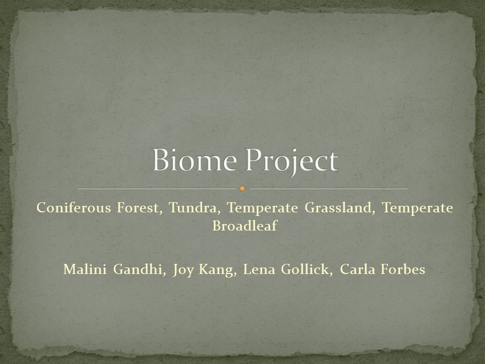Coniferous Forest, Tundra, Temperate Grassland, Temperate Broadleaf Malini Gandhi, Joy Kang, Lena Gollick, Carla Forbes