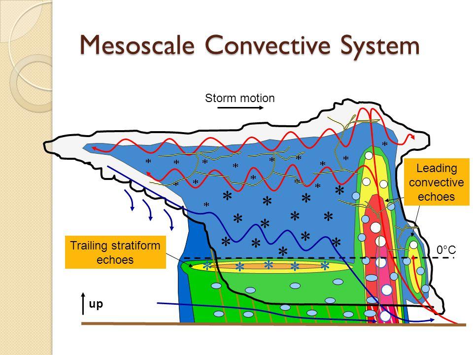 Mesoscale Convective System Storm motion              Trailing stratiform echoes Leading convective echoes 0°C   up                  