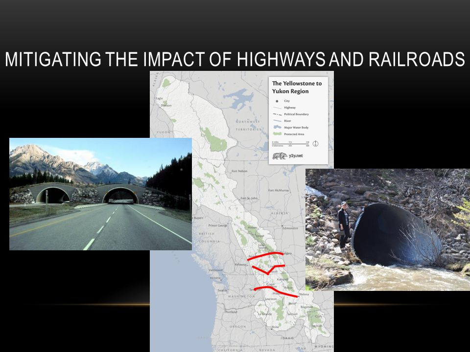 MITIGATING THE IMPACT OF HIGHWAYS AND RAILROADS