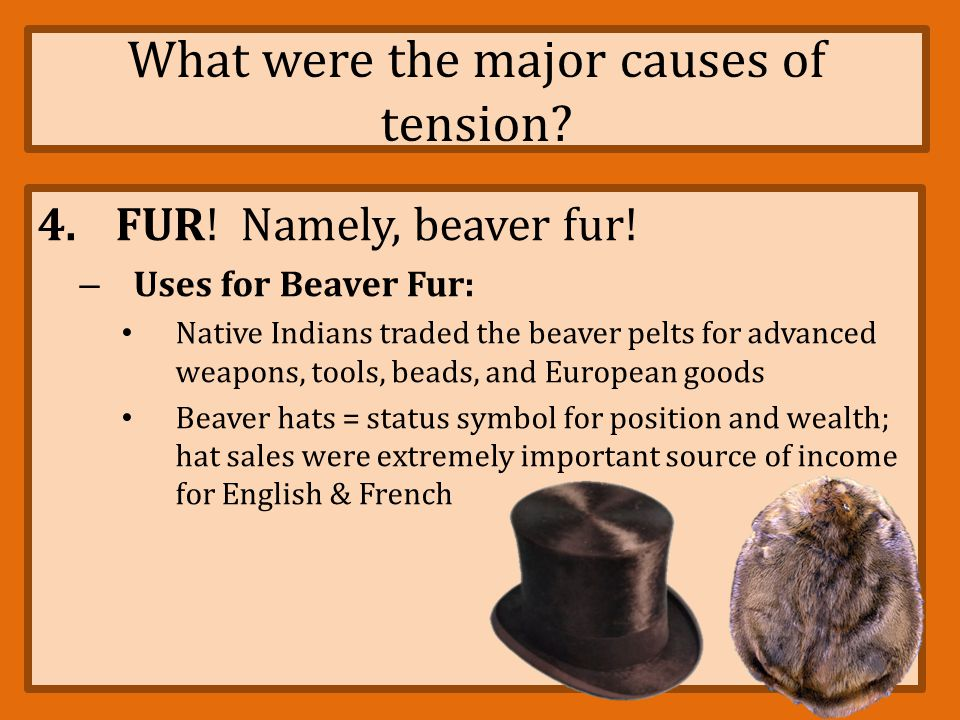What were the major causes of tension? 4.FUR! Namely, beaver fur! – Beaver Wars (1640 – 1701) fought between French and their allies & Iroquois Confed