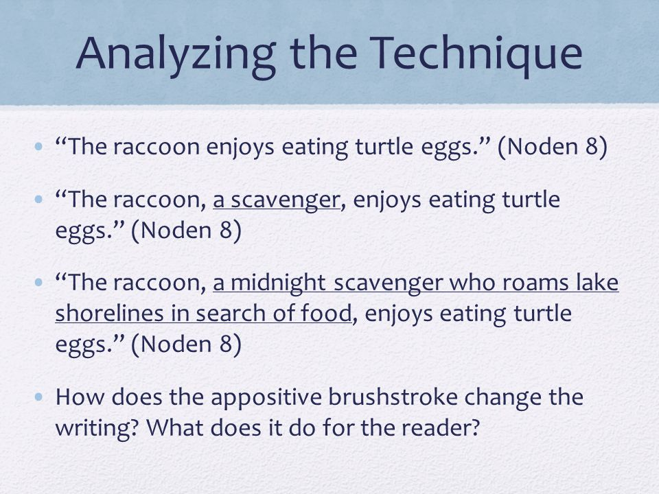 """Analyzing the Technique """"The raccoon enjoys eating turtle eggs."""" (Noden 8) """"The raccoon, a scavenger, enjoys eating turtle eggs."""" (Noden 8) """"The racco"""