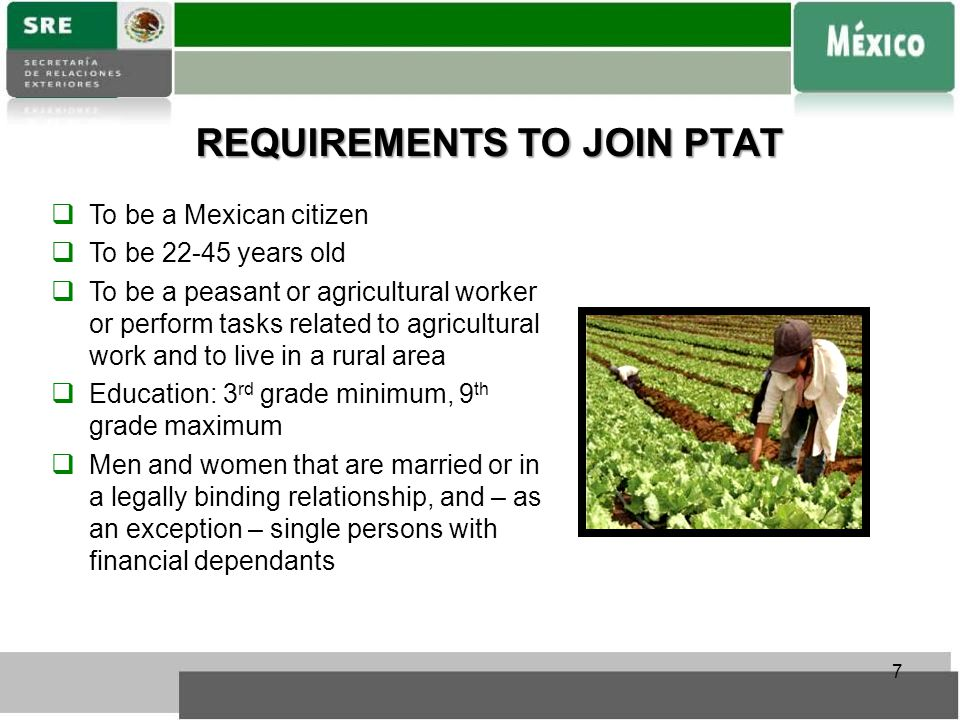 REQUIREMENTS TO JOIN PTAT  To be a Mexican citizen  To be 22-45 years old  To be a peasant or agricultural worker or perform tasks related to agricultural work and to live in a rural area  Education: 3 rd grade minimum, 9 th grade maximum  Men and women that are married or in a legally binding relationship, and – as an exception – single persons with financial dependants 7