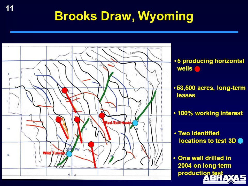 11 53,500 acres, long-term leases53,500 acres, long-term leases 100% working interest 100% working interest Two identified locations to test 3D Two identified locations to test 3D Wild Turkey Red-Tail Hawk 5 producing horizontal wells5 producing horizontal wells One well drilled in 2004 on long-term production testOne well drilled in 2004 on long-term production test