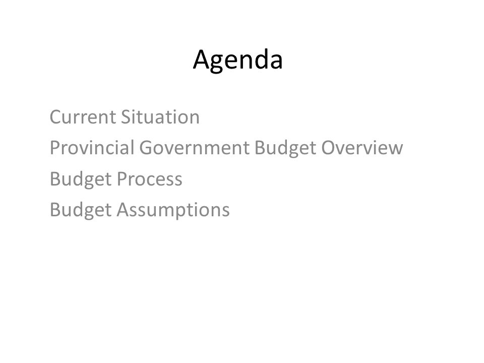 Agenda Current Situation Provincial Government Budget Overview Budget Process Budget Assumptions