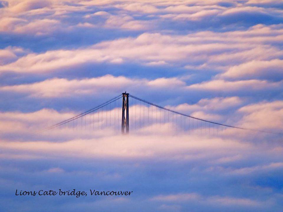 Lions Cate bridge, Vancouver
