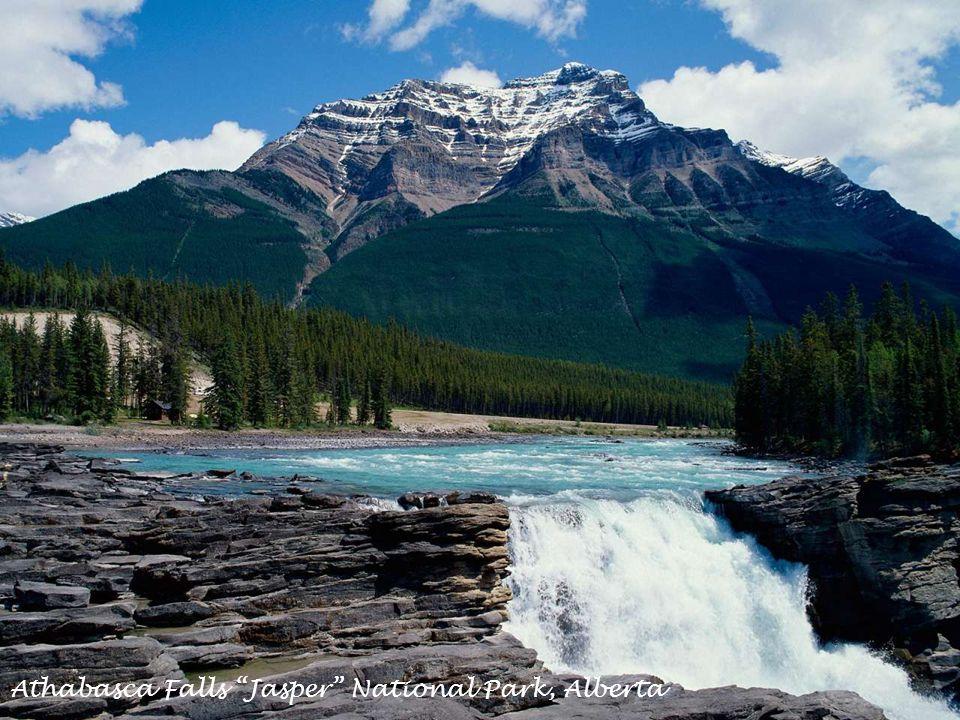 Athabasca Falls Jasper National Park, Alberta