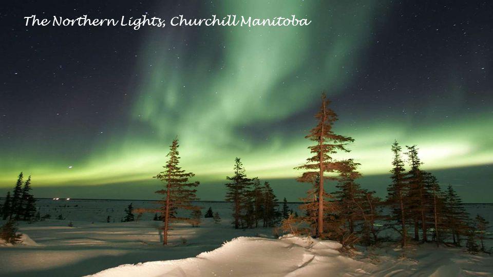 Scenic Jasper National Park, Alberta