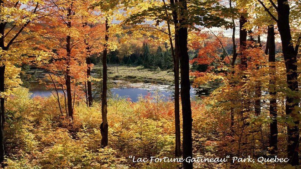 Le Pays de la Sagouine Bouctouche, New Brunswick