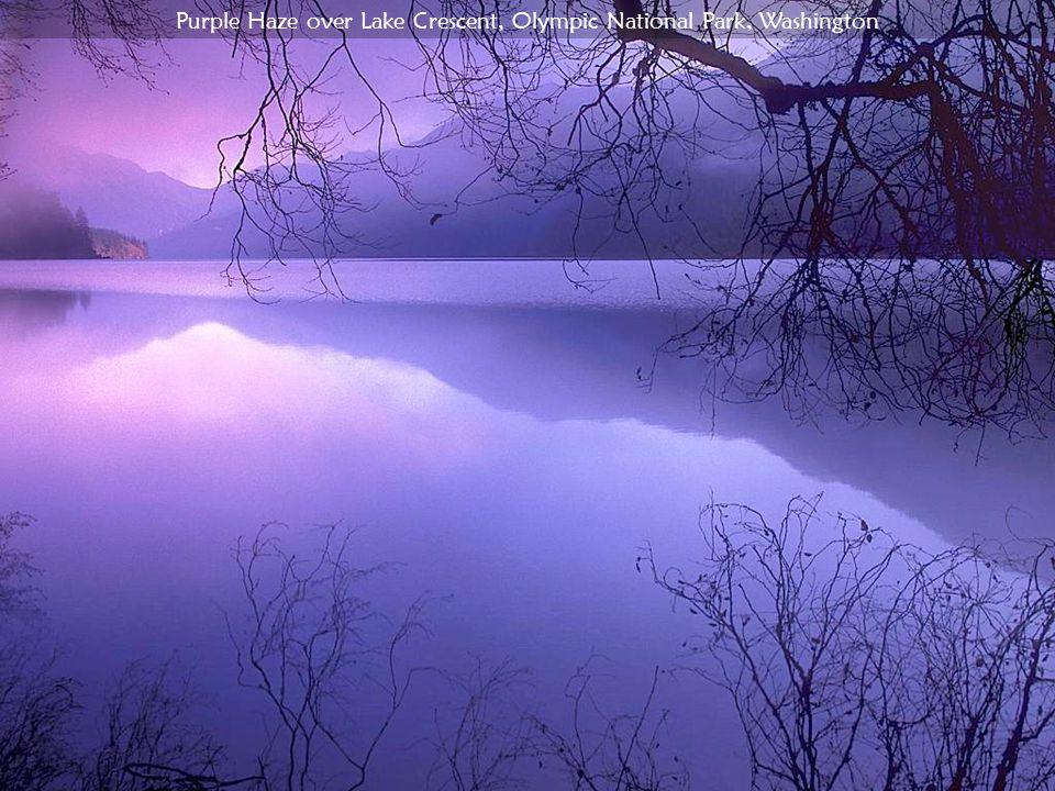 Purple Haze over Lake Crescent, Olympic National Park, Washington