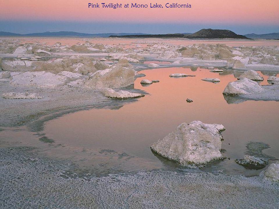 Pink Twilight at Mono Lake, California