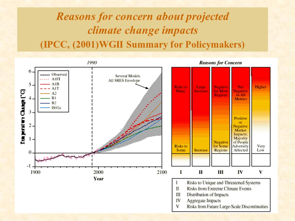 Reasons for concern about projected climate change impacts (IPCC, (2001)WGII Summary for Policymakers)