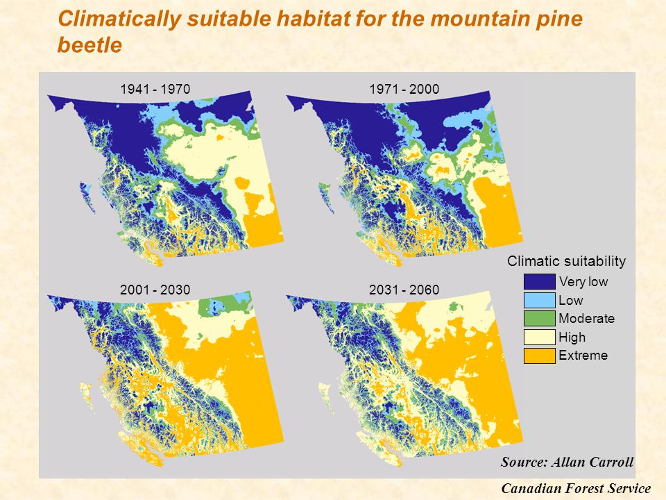 Very low Low Extreme Moderate High Climatic suitability 1941 - 19701971 - 2000 2001 - 20302031 - 2060 Climatically suitable habitat for the mountain p