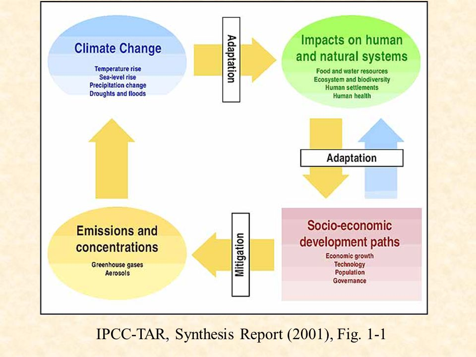 IPCC-TAR, Synthesis Report (2001), Fig. 1-1