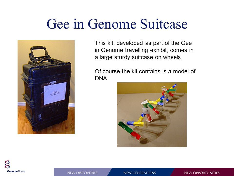 Gee in Genome Suitcase This kit, developed as part of the Gee in Genome travelling exhibit, comes in a large sturdy suitcase on wheels.