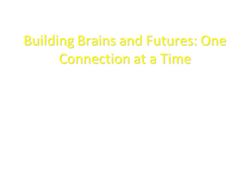 Building Brains and Futures: One Connection at a Time Robbin Gibb LaVonne Rideout
