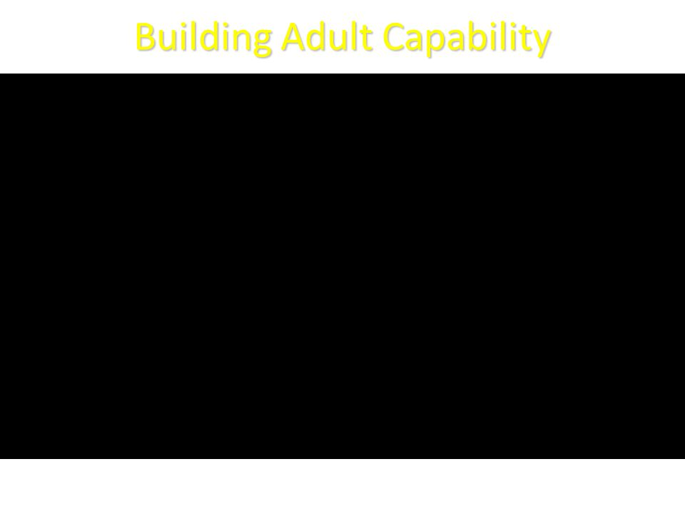 Building Adult Capability